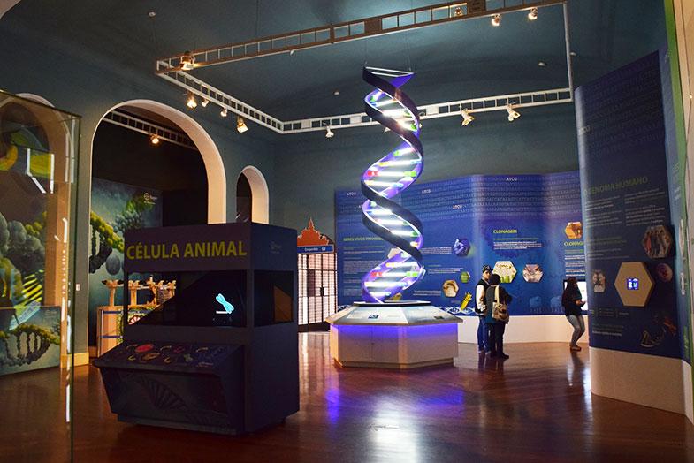 Célula e DNA no Museu Catavento