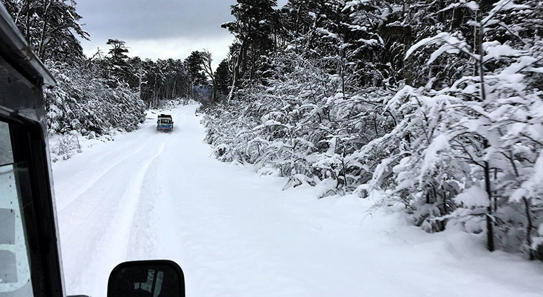 Neve em Ushuaia